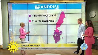 Torra marker i större delen av landet – varning för skogsbrand - Nyhetsmorgon (TV4)