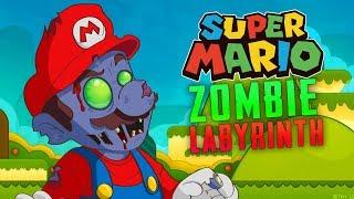 Super Mario Zombie Labyrinth (Custom Zombies)