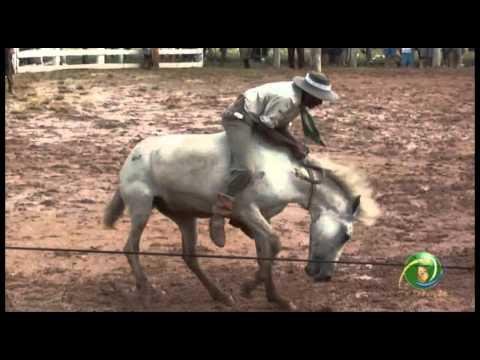 15º Rodeio Crioulo Nacional de Campeões » Gineteada » 29.01 sábado