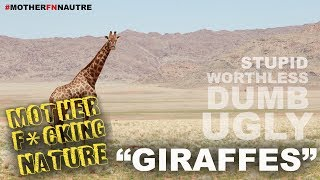 Mother Fn Nature | Giraffes (ft Michael Malone)