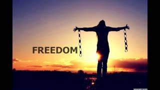 Freedom   Pitbull