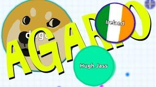 FOR IRELAND! | Agario #2