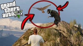 ¿Qué pasa si Chop se enfrenta con un águila? - GTA 5
