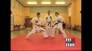 Sport Karate Rules & Scoring