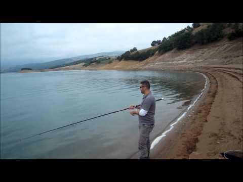 Almus yayın avı 1