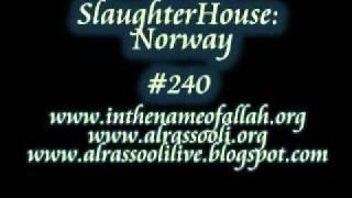 SlaughterHouse : Norway    Part 240