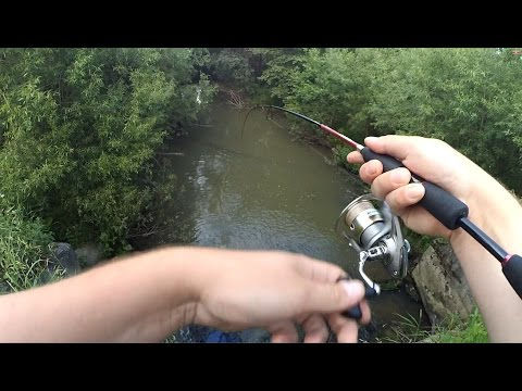 ловля окуня с моста