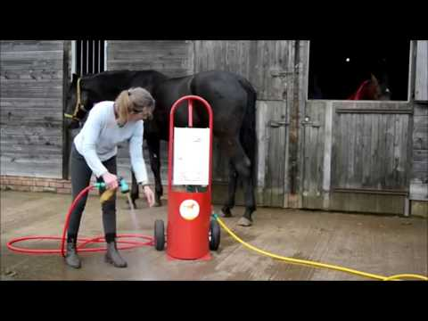 Xxx Mp4 Amazing Engineering WorldWide Amazing Modern Farming Horse Mating Breeding Pairing Training Racing 3gp Sex
