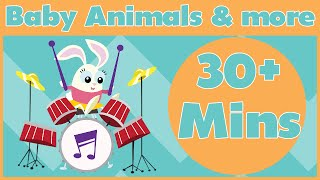 Baby Animal Songs and More! | 30+ Minutes of Nursery Rhymes From Baby Genius