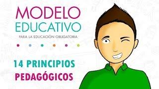 14 PRINCIPIOS PEDAGÓGICOS 2018  |  Modelo Educativo 2018