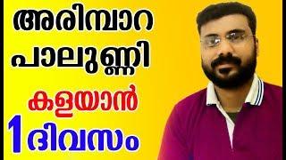 അരിമ്പാറ , പാലുണ്ണി  1 ദിവസം കൊണ്ട് മാറ്റം |How To Get Rid Of Warts NEW