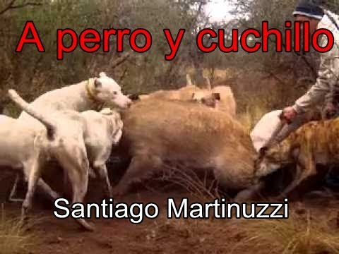 Caza de Chanchos con caballo perro y cuchillo Santiago Martinuzzi
