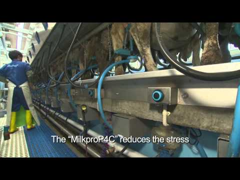 Milkline Parallel PRO and Proactive milking parlors in Japan