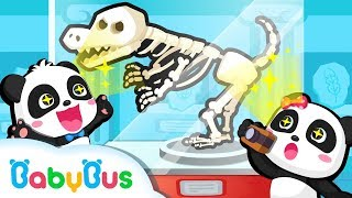Going to Amazing Museum | Kids Good Manners | Dinosaur Fossils | BabyBus