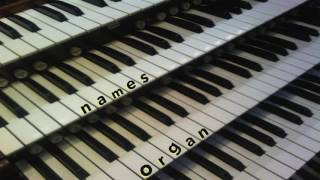 Names Organ