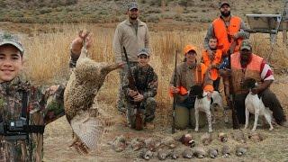 Chukar and Pheasant Hunting : Upland Game Hunt Using Dogs at Big Cottonwood Game Ranch