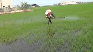 Bio Organic Macro Micro Nutrients