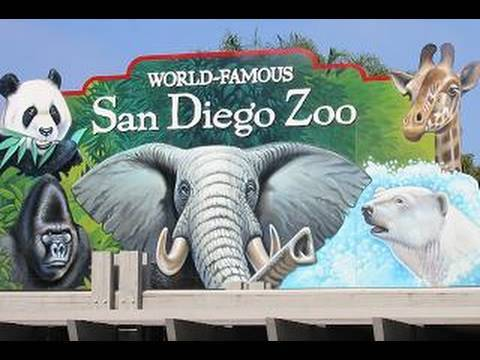 Xxx Mp4 Visiting The San Diego Zoo In HD 3gp Sex