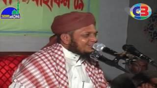 মাওলানা মোশারফ হোসেন হেলালী। নতুন বাংলা ওয়াজ। Uploaded By-Tazedare Madina
