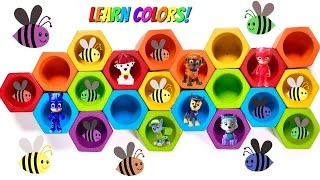 Best Learning Colors Video for Children & Preschool Paw Patrol Toys Bee Hives