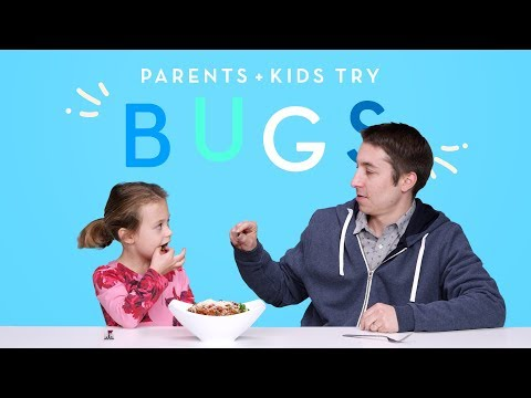 Kids and Their Parents Eat Bugs Kids Try HiHo Kids