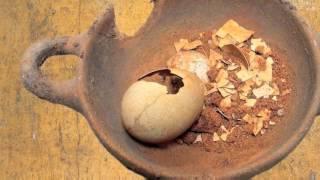 Nutrire la città. A tavola nella Palermo antica