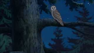 Sanzoku no Musume Ronja - The Wolf Song (Ulvesangen) AMV