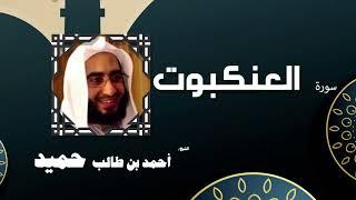 القران الكريم كاملا بصوت الشيخ احمد بن طالب حميد | سورة العنكبوت