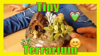 MAKING A SUCCULENT TERRARIUM AND HOME DEPOT TRIP garden for kids diy growing how to make gardening