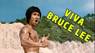 Wu Tang Collection - Viva Bruce Lee (French Dub)