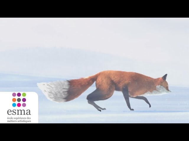 The Short Story of a Fox and a Mouse (Oscars 2016 - Nominated Short Film - Additional List)