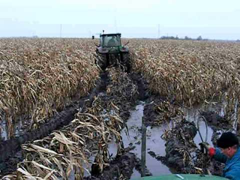 Agrofamily KFT kukorica aratás 2010