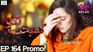 Kambakht Tanno - Episode 164 Promo | A Plus ᴴᴰ Drama | Shabbir Jaan, Tanvir Jamal, Sadaf Ashaan