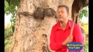 Worku Andualem - Ethiopian New Traditional Music 2015