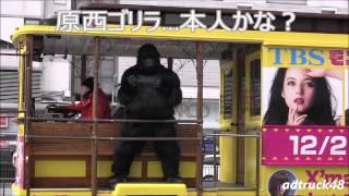 原西ゴリラがバスに乗ってノリノリで番宣してます!