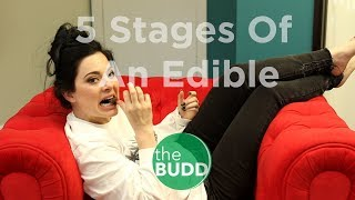 5 Stages of An Edible