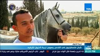 أخبارTeN - شبان فلسطينيون في القدس يهوون تربية الخيول للترفيه