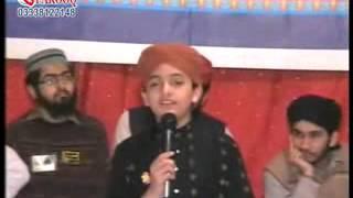 Amina Da Laal Jaya Laal Koi Na By Taimoor Sultan Madni