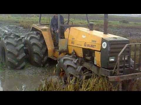 lavoura de arroz area mole.