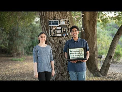 Xxx Mp4 Can Two High School Students Use Machine Learning To Predict Wildfires 3gp Sex