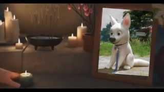 Hiro and Bolt - Outside