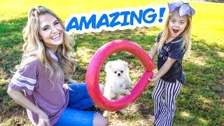 TEACHING OUR PUPPY THE CUTEST TRICKS EVER!!! (HIRED PROFESSIONAL DOG TRAINER)