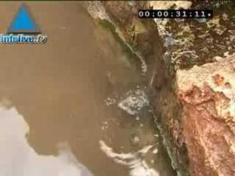Infolive.tv Minute - The beautiful Ein Sataf spring in Jerus