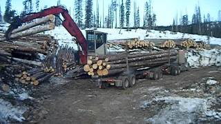 Loading a Logging Truck
