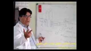 پیام رسانی سلولی - قسمت دوم - Cell signaling