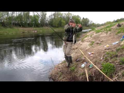 рыбалка на речке на поплавочную удочку