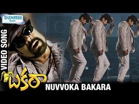 Bakara Telugu Movie Songs | Nuvvoka Bakara Video Song | Srihari | Yashika | Ali | Shemaroo Telugu