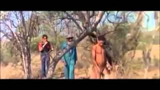 Videos curtos para whatsapp