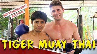 MUAY THAI TRAINING AT TIGER MUAY THAI