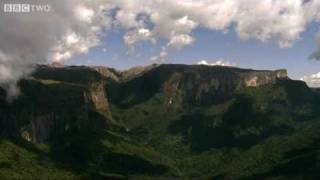 Wild Madagascar, with David Attenborough - Madagascar: Island of Marvels, Preview - BBC Two